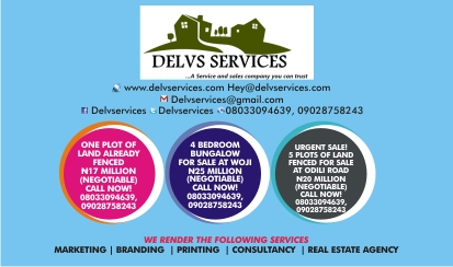 Delvs Services Advert