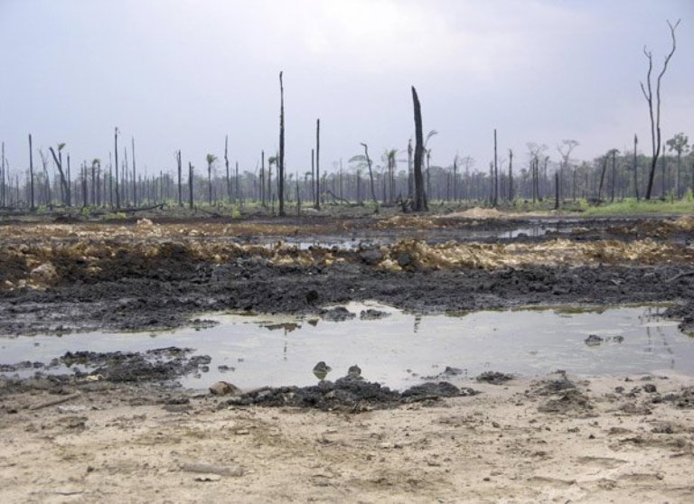 Rivers State: Shell begins Bodo cleanup, deploys 400 indigenous workers