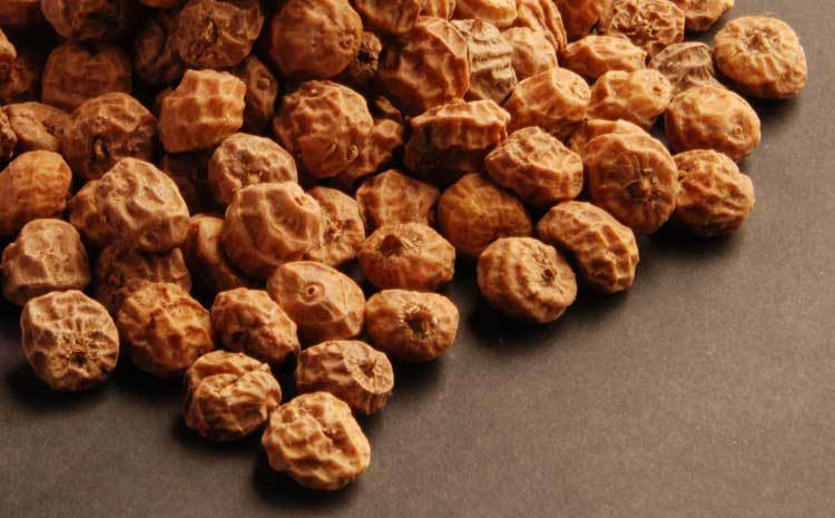 Photo of Health benefits of tiger nuts(Hausa groundnuts)
